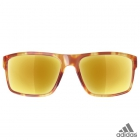 adidas whipstart brown havanna / a423 - 6064