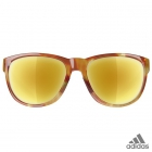 adidas wildcharge brown havanna / a425 - 6064